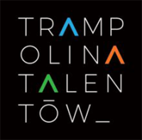 Fundacja Rozwoju Talentów